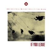 If You Leave - Single