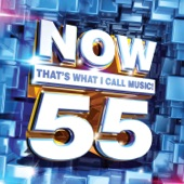 DJ Snake & Major Lazer - NOW That's What I Call Music, Vol. 55
